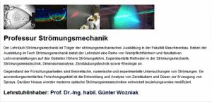 Prof. Dr.-Ing. Günter Wozniak - Lehrstuhl für Strömungsmechanik der TU Chemnitz